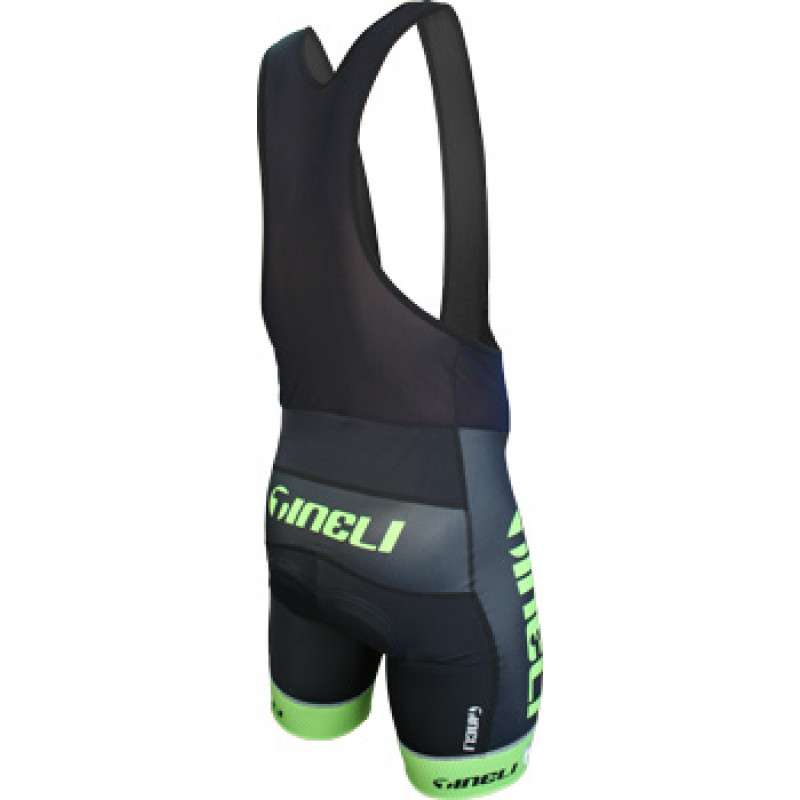 002 Tineli bibshorts green 2010 Back Tineli Team Bibs